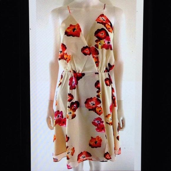 68c0e36652192 Haute Hippie Harmony Wrap Dress Floral Lined